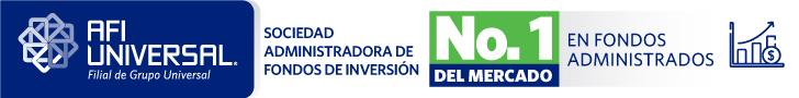 Fondo de Inversión Cerrado Libre Para el Desarrollo de Infraestructuras Dominicanas I